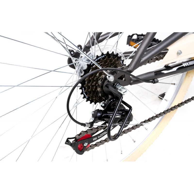 26-Zoll-Damen-Sport-Fahrrad-Trekking-City-Bike-6-Gang-Shimano-Vintage-Retro_b3